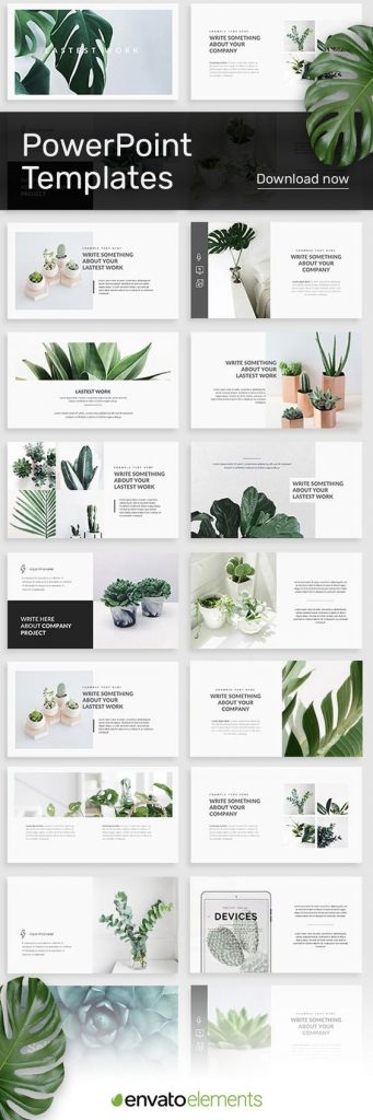 Envato Succulent PowerPoint Template for Visual Aid Slide Deck